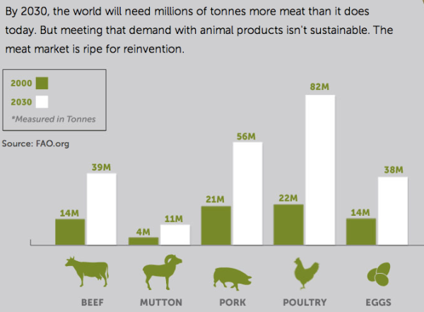 Meat COnsumption 2030